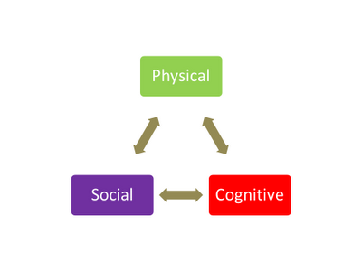 Physical, Social and Cognitive Flowchart